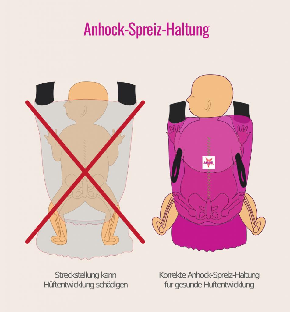 Anhock-Spreiz-Haltung gegen Hüftdysplasie